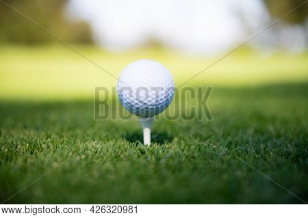 Green Grass With Golf Ball Close-up In Soft Focus At Sunlight. Golf Playground For Golf Club Concept