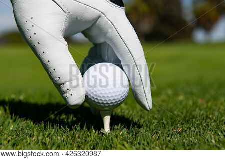 Hand Putting Golf Ball On Tee In Golf Course. Golf Ball In Grass Close Up.
