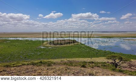 African Landscape. The Lake Reflects The Blue Sky And Clouds. Nearby Is A Swamp With Green Plants. D
