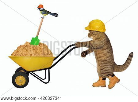 A Beige Cat Builder In A Construction Helmet Pushes A Wheel Barrow Full Of Sand. White Background. I