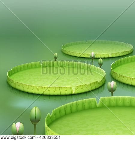 Vector Tropical Plant Giant Amazon Water Lily Pad Or Huge Floating Lotus Victoria Amazonica On Green