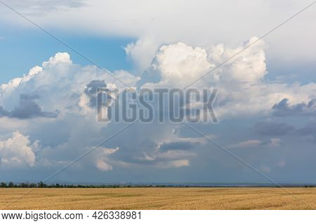 Golden Wheat Field On The Background Of The Sky And Huge Rain Clouds. Hot Summer Landscape. Panorama