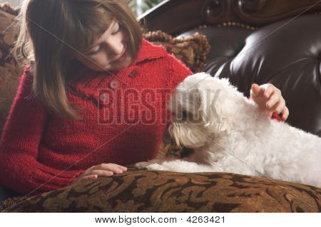 Young Girls With Her Maltese Puppy