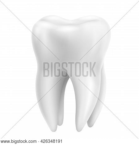 Tooth, Realistic 3d Vector Isolated On White Background. Dentistry, Medicine And Healthcare Concept