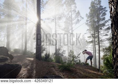 Photographer In Foggy Forest. Young Man During Photographing Trees In Beautiful Light. Tenerife, Can