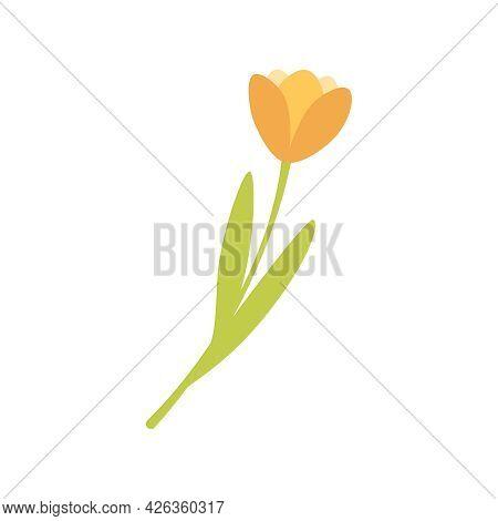 Cartoon Orange Tulip With Green Stalk Vector Illustration