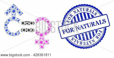 Bacilla Mosaic Genders Relation Symbol Icon, And Grunge For Naturals Seal Stamp. Genders Relation Sy