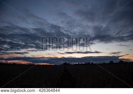 A Beautiful Morning Landscape During The Dawn Before The Sunrise. Summertime Scenery Of Northern Eur