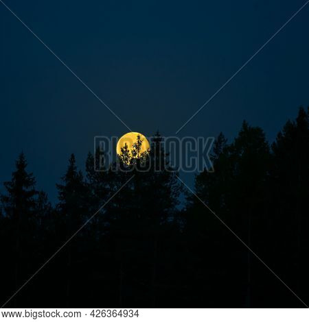A Beautiful Full Moon Shining Low In The Sky During The Summer Dawn. Summertime Scenery Of Northern