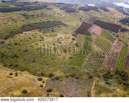 Mountain Landscape At Spring In The Golan Heights, Israel.