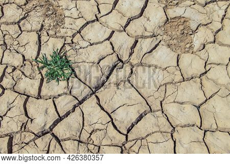 The Drought Land Texture In Thailand. Dry Cracked Soil Dirt Or Earth During Drought At Sunset. The G