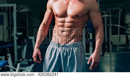 Naked Bare Torso. Six Packs. Sportsman Abs. Workout And Healthy Lifestyle.