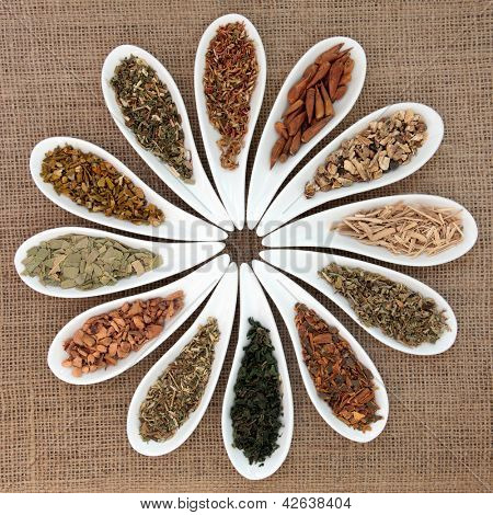 Herb selection used in natural health remedies and making magical potions in white porcelain dishes over hessian background. poster