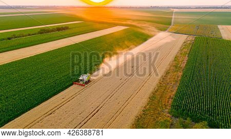 Aerial View Of Agricultural Harvester, Combine As It Cutting And Harvesting Mature Wheat On Farm Fie