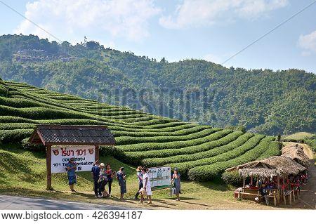 Mae Salong, Chiang Rai Province, Thailand - February 18, 2019: Tourists Visit 101 Tea Plantations. R