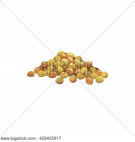 Pile Of Chickpeas Isolated Heap Of Pea Beans. Vector Organic Vegetarian Food, Soy Beans In Pile. Hea
