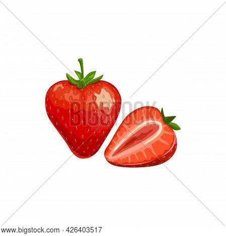 Strawberry Isolated Vector Wild Or Garden Berry, Ripe Plant With Green Stem On White Background. Car