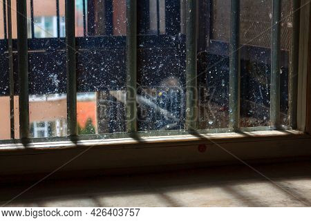 Window With Dirty Glass And Grates . Prison Cell With Security Grates . Low Light In The Window