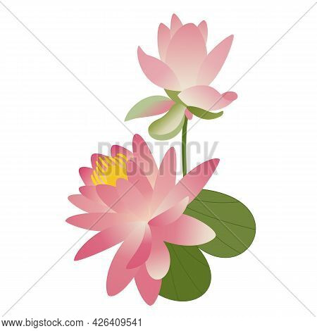 Pink Lotus With Leaf And Bud. Water Lily, A Beautiful Tropical Flower. Hand-drawn Vector. Asian Cult
