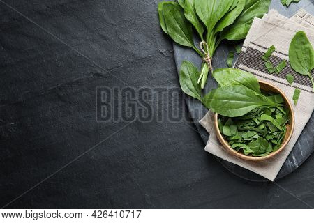 Broadleaf Plantain Leaves On Black Slate Table, Top View. Space For Text