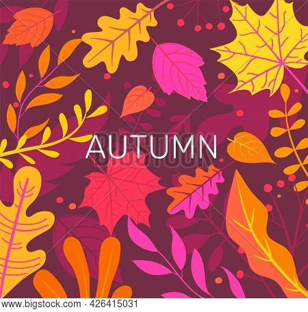 Autumn Banner Full Of Colorful Autumn Leaves. Fall Season Flyers, Presentations, Reports Promotion,