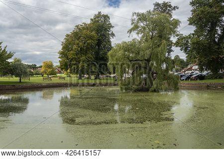 Godstone, Surrey, Uk August 2020 - View Of The Pond On Godstone Green, Surrey, Uk