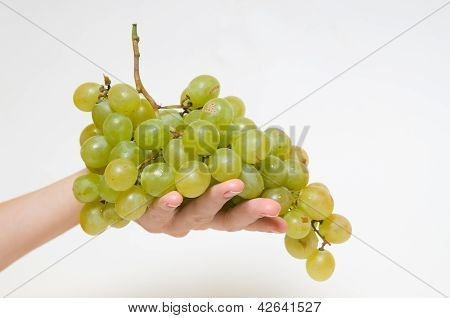 Green grapes on hand