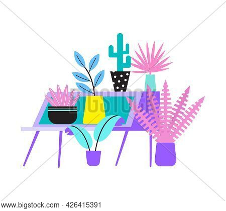 Floristry Flat Icon With Potted House Plants On Display Vector Illustration