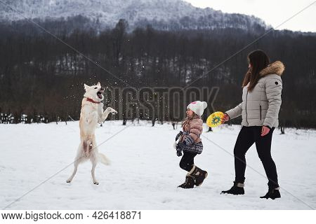 Caucasian Woman With Girl Play In Snow With Their Dog. Mix Breed Dog Jumps High And Tries To Catch F