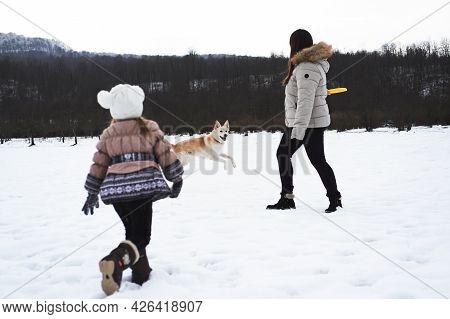 Active Energetic Half Breed Shepherd And Husky. Mom Daughter And Pet. Caucasian Woman With Girl Play