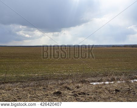 Morning Landscape Of A Misty Field In Early Spring In The Village