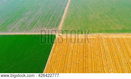 Above View On Countryside Road That Is Going Between Agricultural Fields, Rural Path, Round Of Straw