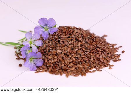 Flax Seeds Flax Flowers White Background Close Plan Healthy Products Concept