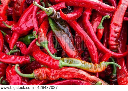Red Hot Ripe Peppers. Close-up. Collection And Sale Of Peppers. Pepper Background Or Texture.