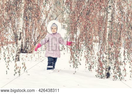 Child Girl In A Fabulously Beautiful Park. Pink Leaves Of Trees And Snow. The Leaves Did Not Have Ti