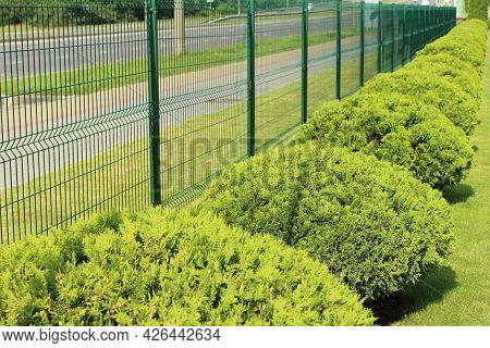 Neat Fence And Green Spaces Along The Parking Lot In The City