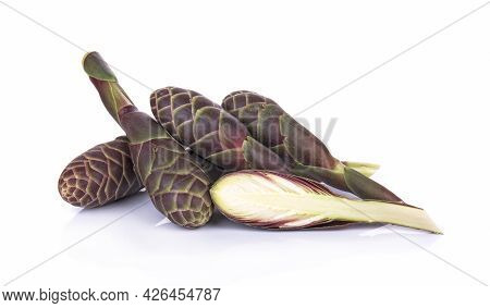 Phlai, Cassumunar Ginger, Bengal Root Isolated On White Background