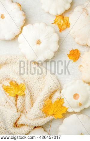 Creative Autumn White Sweater, White Squash, Yellow Dry Maple Leaves  On White Background Copy Space