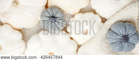 Autumn Composition. Feminine Desk Table With Knitted Scarf And White Squash Pumpkin On White Backgro
