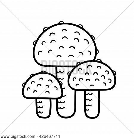 Cute Mushroom In Doodle Style. Poisonous Mushroom, Fly Agaric, Toadstool. Vector Isolated Hand Drawn