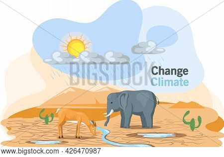 Problem Of Disappearing Water Sources, Drought, Ecological Disaster On Planet Animals Are Thirsty. C