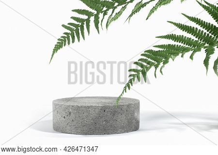 Cylindrical Stone Concrete Eco Podium On White Background With Hard Shadows And Tropical Fern Leaves