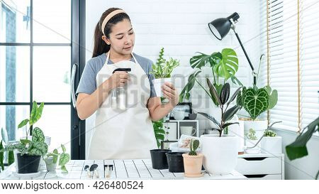 Asian Woman Gardener Is Holding A Pot With Plant And Take Care Of Plants By Spraying Fertilizer Wate
