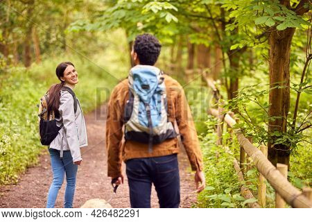 Rear View Of Couple With Pet Dog Hiking Along Path Through Trees In Countryside