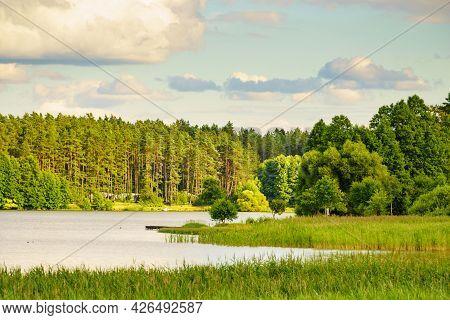 Lake Kierwik In Masuria Lakeland In Poland. Water Shore Overgrown With Green Reeds. Summer Landscape