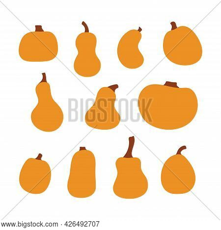 Pumpkin Squash Cartoon Set For Thanksgiving Or Halloween Holidays Design. Orange Autumn Pumpkins For
