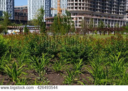 Residential Apartments Under Construction On The Background Of Green Leaves