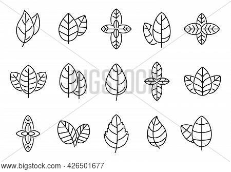 Agriculture Basil Icons Set Outline Vector. Aroma Leaf. Aromatic Healthcare