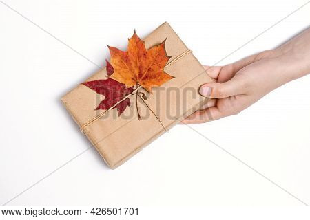 Craft Gift In Female Hand, White Background, Autumn Concept, Two Maple Bright Dry Leaves, Thanksgivi