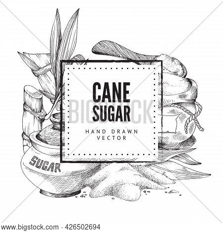 Black And White Hand-drawn Vector Illustration With Square Frame, Graphic Elements Of Cane Sugar And